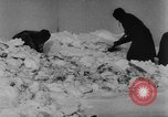 Image of Blue Division Spanish forces under Commander Grandes World War 2 Leningrad Russia Soviet Union, 1942, second 50 stock footage video 65675041932