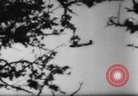 Image of Germans resupply defensive forces on beach by cargo gliders, during Wo Italy, 1943, second 10 stock footage video 65675041934