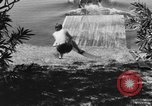 Image of surf board Winter Haven Florida USA, 1931, second 19 stock footage video 65675041976