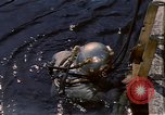 Image of deep sea divers United States USA, 1943, second 33 stock footage video 65675042214