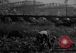 Image of victory gardens Chicago Illinois USA, 1943, second 35 stock footage video 65675042217