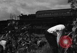 Image of victory gardens Chicago Illinois USA, 1943, second 37 stock footage video 65675042217