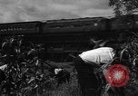 Image of victory gardens Chicago Illinois USA, 1943, second 38 stock footage video 65675042217