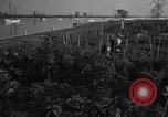 Image of victory gardens Chicago Illinois USA, 1943, second 60 stock footage video 65675042217