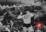 Image of diving competition Germany, 1962, second 6 stock footage video 65675042230