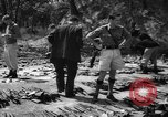 Image of Belgian refugees Congo, 1960, second 32 stock footage video 65675042251
