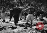 Image of Belgian refugees Congo, 1960, second 33 stock footage video 65675042251