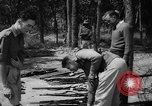Image of Belgian refugees Congo, 1960, second 35 stock footage video 65675042251