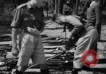 Image of Belgian refugees Congo, 1960, second 36 stock footage video 65675042251