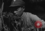 Image of United States 14th Air Force China, 1945, second 28 stock footage video 65675042289
