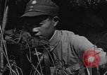 Image of United States 14th Air Force China, 1945, second 29 stock footage video 65675042289