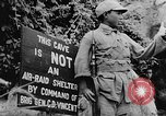 Image of United States 14th Air Force China, 1945, second 43 stock footage video 65675042289