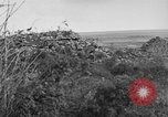 Image of Allied soldiers France, 1918, second 20 stock footage video 65675042431