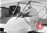 Image of Fokker biplane Germany, 1922, second 13 stock footage video 65675042534