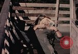 Image of fire trucks Takhli Thailand, 1964, second 36 stock footage video 65675042582