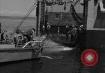 Image of mine sweep boats Sea of Japan, 1952, second 39 stock footage video 65675042591