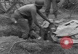 Image of United States 969th Field Artillery Unit Luxembourg, 1944, second 44 stock footage video 65675042608