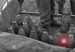 Image of United States 969th Field Artillery Unit Luxembourg, 1944, second 49 stock footage video 65675042608