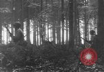 Image of United States 28th Infantry Division Vossenack Germany, 1944, second 12 stock footage video 65675042610