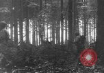Image of United States 28th Infantry Division Vossenack Germany, 1944, second 13 stock footage video 65675042610