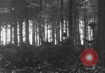 Image of United States 28th Infantry Division Vossenack Germany, 1944, second 14 stock footage video 65675042610