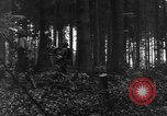 Image of United States 28th Infantry Division Vossenack Germany, 1944, second 31 stock footage video 65675042610