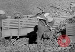 Image of coal mining Germany, 1946, second 49 stock footage video 65675042618
