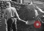 Image of coal mining Germany, 1946, second 55 stock footage video 65675042618