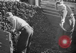 Image of coal mining Germany, 1946, second 56 stock footage video 65675042618