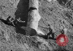 Image of coal mining Germany, 1946, second 62 stock footage video 65675042618