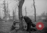 Image of Germans cutting trees for fuel in Berlin after World War 2 Berlin Germany, 1945, second 2 stock footage video 65675042630