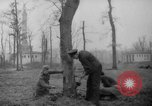 Image of Germans cutting trees for fuel in Berlin after World War 2 Berlin Germany, 1945, second 5 stock footage video 65675042630