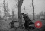 Image of Germans cutting trees for fuel in Berlin after World War 2 Berlin Germany, 1945, second 6 stock footage video 65675042630