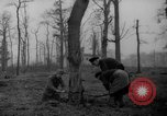 Image of Germans cutting trees for fuel in Berlin after World War 2 Berlin Germany, 1945, second 11 stock footage video 65675042630