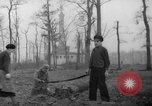 Image of Germans cutting trees for fuel in Berlin after World War 2 Berlin Germany, 1945, second 16 stock footage video 65675042630