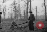 Image of Germans cutting trees for fuel in Berlin after World War 2 Berlin Germany, 1945, second 17 stock footage video 65675042630
