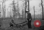 Image of Germans cutting trees for fuel in Berlin after World War 2 Berlin Germany, 1945, second 18 stock footage video 65675042630