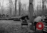 Image of Germans cutting trees for fuel in Berlin after World War 2 Berlin Germany, 1945, second 19 stock footage video 65675042630