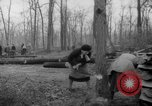 Image of Germans cutting trees for fuel in Berlin after World War 2 Berlin Germany, 1945, second 21 stock footage video 65675042630
