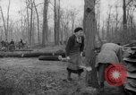Image of Germans cutting trees for fuel in Berlin after World War 2 Berlin Germany, 1945, second 22 stock footage video 65675042630