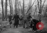 Image of Germans cutting trees for fuel in Berlin after World War 2 Berlin Germany, 1945, second 23 stock footage video 65675042630