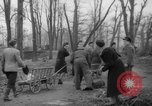 Image of Germans cutting trees for fuel in Berlin after World War 2 Berlin Germany, 1945, second 24 stock footage video 65675042630