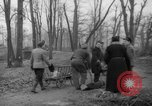 Image of Germans cutting trees for fuel in Berlin after World War 2 Berlin Germany, 1945, second 25 stock footage video 65675042630