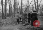 Image of Germans cutting trees for fuel in Berlin after World War 2 Berlin Germany, 1945, second 26 stock footage video 65675042630