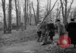 Image of Germans cutting trees for fuel in Berlin after World War 2 Berlin Germany, 1945, second 27 stock footage video 65675042630