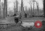 Image of Germans cutting trees for fuel in Berlin after World War 2 Berlin Germany, 1945, second 28 stock footage video 65675042630
