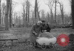 Image of Germans cutting trees for fuel in Berlin after World War 2 Berlin Germany, 1945, second 35 stock footage video 65675042630