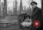 Image of Germans cutting trees for fuel in Berlin after World War 2 Berlin Germany, 1945, second 36 stock footage video 65675042630