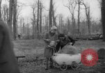 Image of Germans cutting trees for fuel in Berlin after World War 2 Berlin Germany, 1945, second 37 stock footage video 65675042630