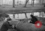 Image of Germans cutting trees for fuel in Berlin after World War 2 Berlin Germany, 1945, second 54 stock footage video 65675042630